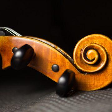 Le violon en quelques mots