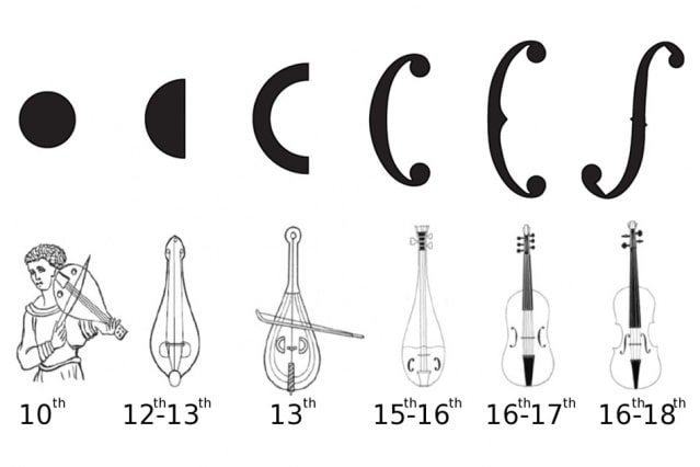 L'évolution de la forme des ouïes des instruments à cordes frottées européens.