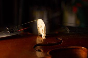Le montage sur les violons d'étude