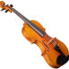 Violon Passion-Tradition Artisan