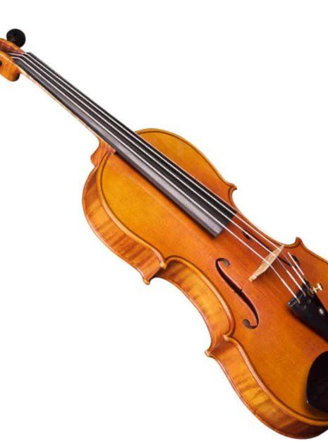 Violon Passion Tradition Artisan trois quart de côté
