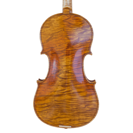 violon passion tradition maître fond