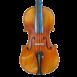 violon passion tradition maître table