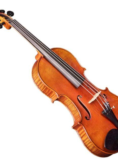 Violon Passion Tradition Maître trois quart de côté