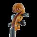 violon passion tradition maître volute