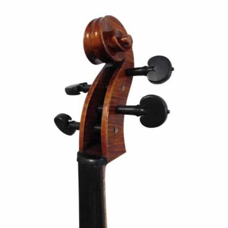 Violoncelle passion tradition maître
