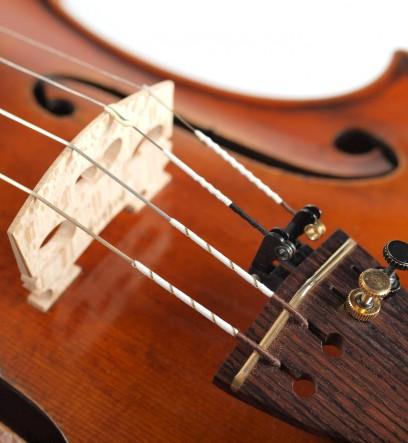panachage warchal avantgarde pour violon presentation tendeurs et chevalet alternatif