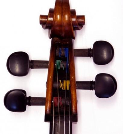 warchal la prototype pour violoncelle chevilles