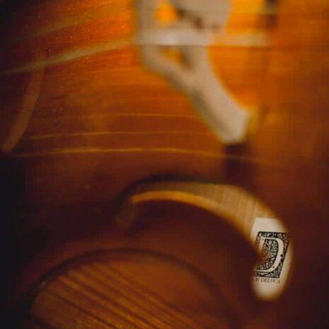 """Vu de l'intérieur de la viole """"Printemps"""" par Détails sur la sculpture de la tête de la viole """"Printemps"""" par Elsa M Deluca."""