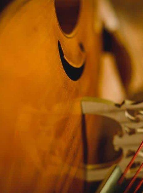 """Reflet du chevalet sur la table de la viole """"Printemps"""" par Détails sur la sculpture de la tête de la viole """"Printemps"""" par Elsa M Deluca."""