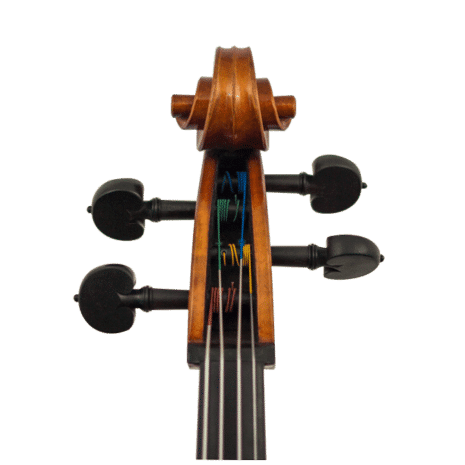 violoncelle kaiming guan europe volute
