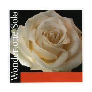 pirastro wondertone solo pour violon