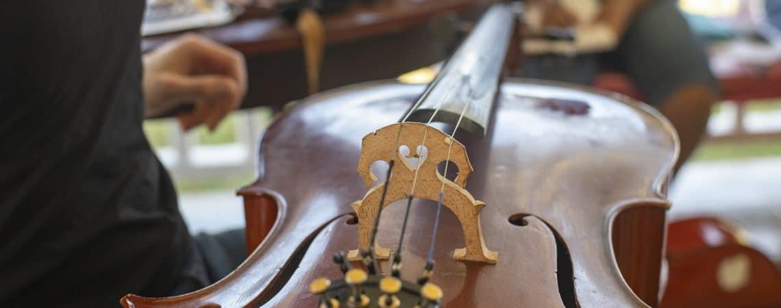 L'entretien d'un violoncelle en Guadeloupe