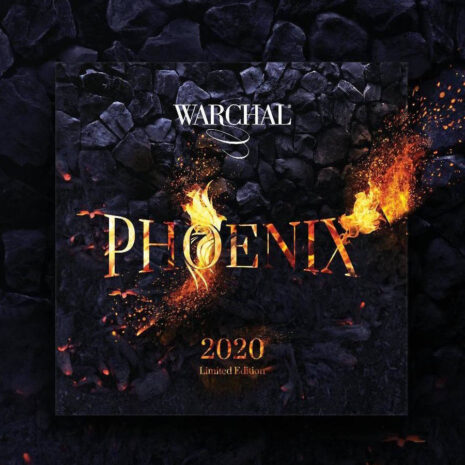 Warchal Phoenix pour violon