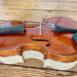 Violon allemand Werner éclisses