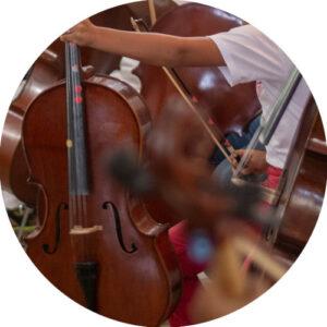 Violoncelles pour débutant