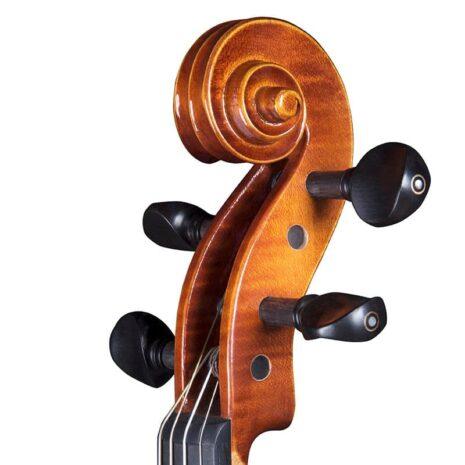 Volute d'un violon Bohème Luby